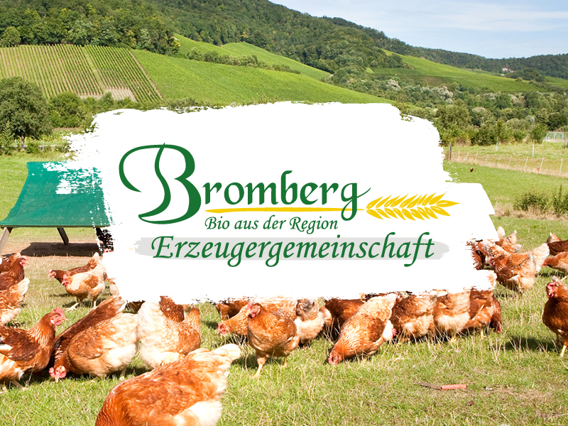 Bromberg_logo_800x600px