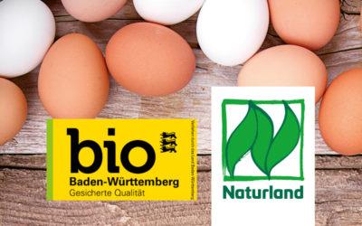 Bio-Eier vom Bromberghof