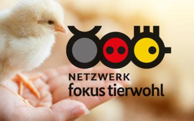 Netzwerk – Fokus Tierwohl
