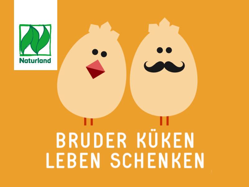 bio_bruderkueken